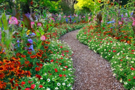 Informal Design Ideas for Garden Paths Walk Info