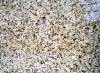 China granite polished slabs&tiles
