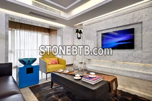 The beautiful marble mural of the living room