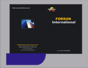 CHANGZHOU FORSUN IMPORT &EXPORT CO.,LTD